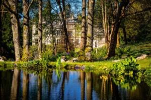 Palé Hall ornamental pond gardens