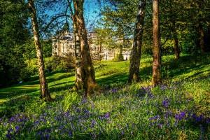 Palé Hall woodland gardens