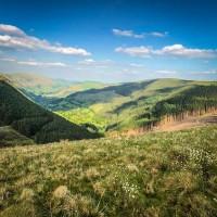 Llechweddygarth shoot north Wales