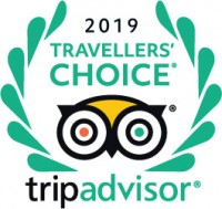 Trip Advisor Travellers Choice logo