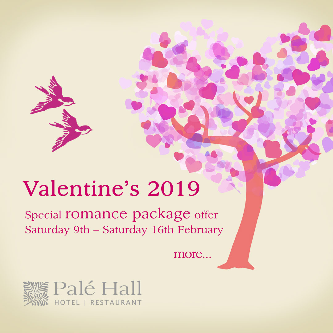Valentine's Day 2019 hotel restaurant