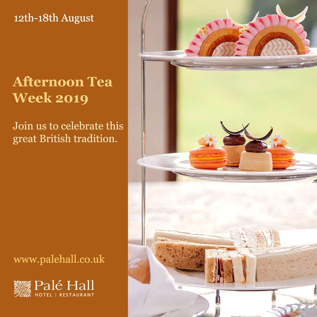 Afternoon Tea Week 2019 Snowdonia