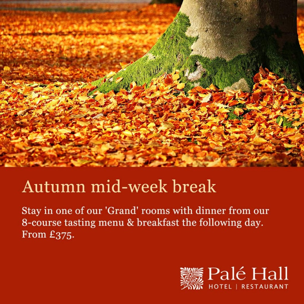Autumn Break Offer