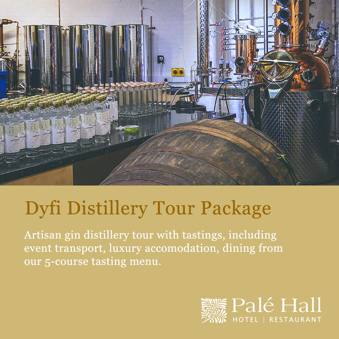 Gin distillery tour package