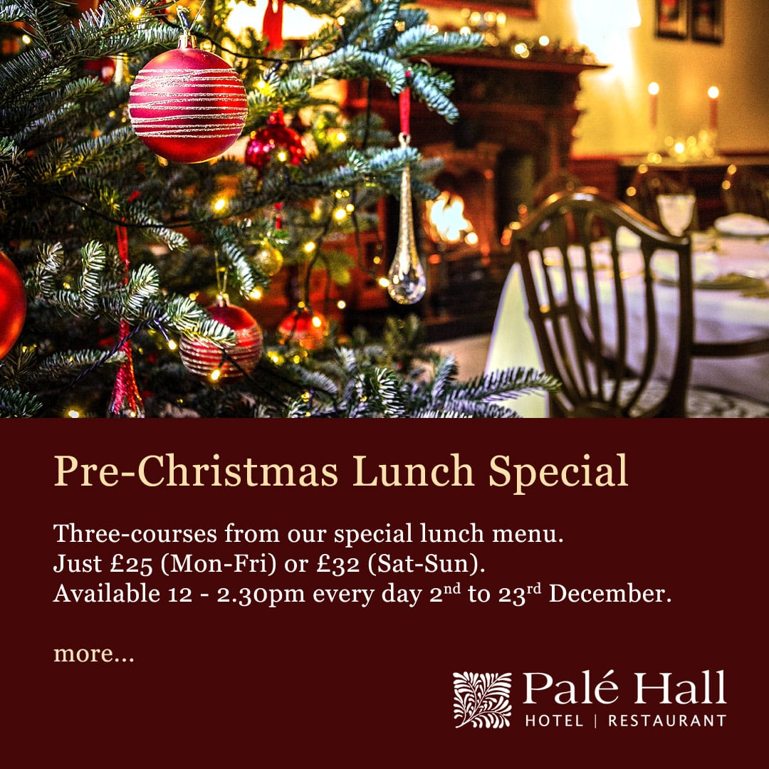 Palé Hall Christmas lunch offer