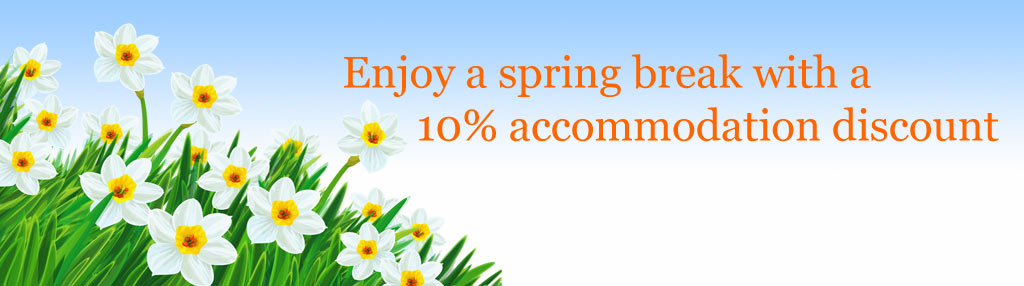 Spring discount offer