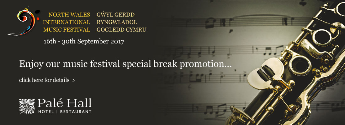 North Wales International Music Festival promo
