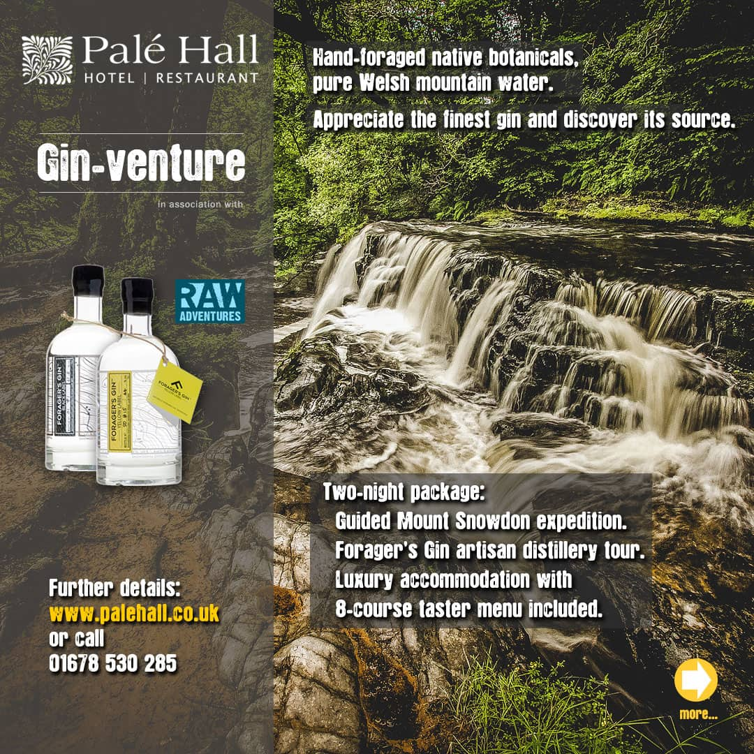 Palé Hall Snowdonia gin distillery tour