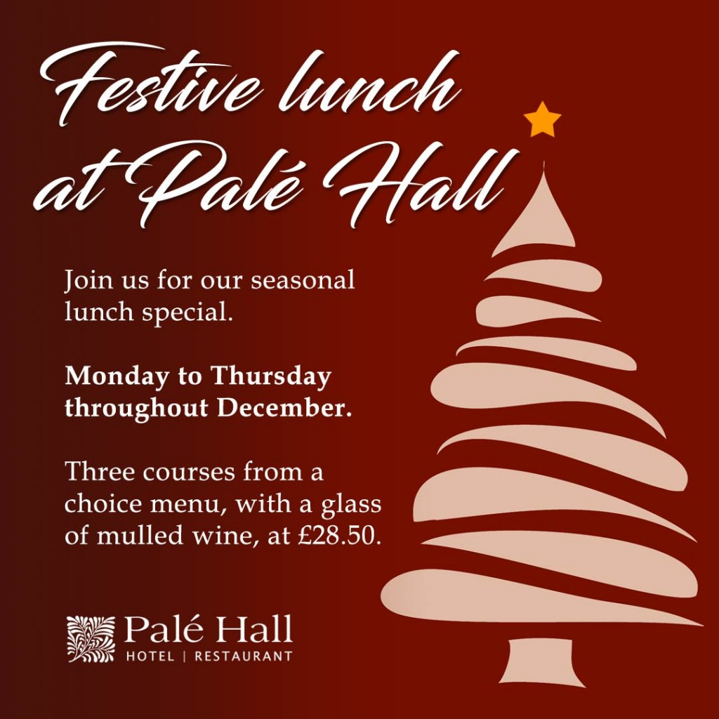 Festive lunch December Palé Hall restaurant