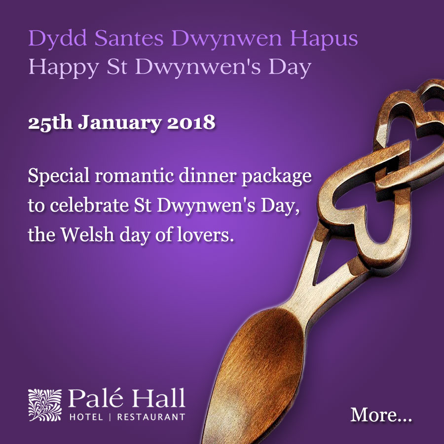 St Dwynwen's Day welsh valentine